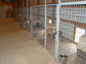 Kennel Pens Inside 7207